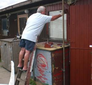 Skure males i S/F Mellemfortet 2015. Foto - Palle Aagensen